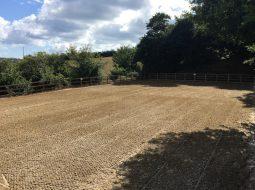 Beta-Ride Equestrian Arena Surface