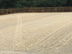 Redhill Equestrian Arena Surface - sand & fibre arena surface